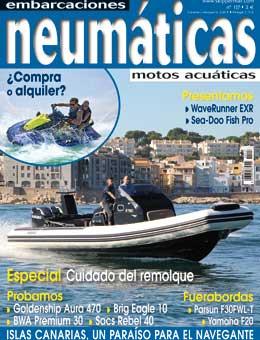 REVISTA NEUMÁTICAS 117 DE CURT