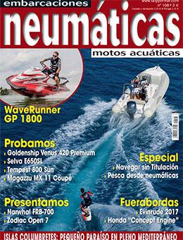 neumaticas_108-2