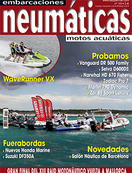 neumaticas_110-2